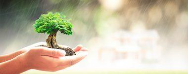 Seguros Responsabilidad Civil Medioambiental